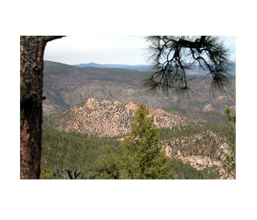 Gila National Forest's Gila Wilderness