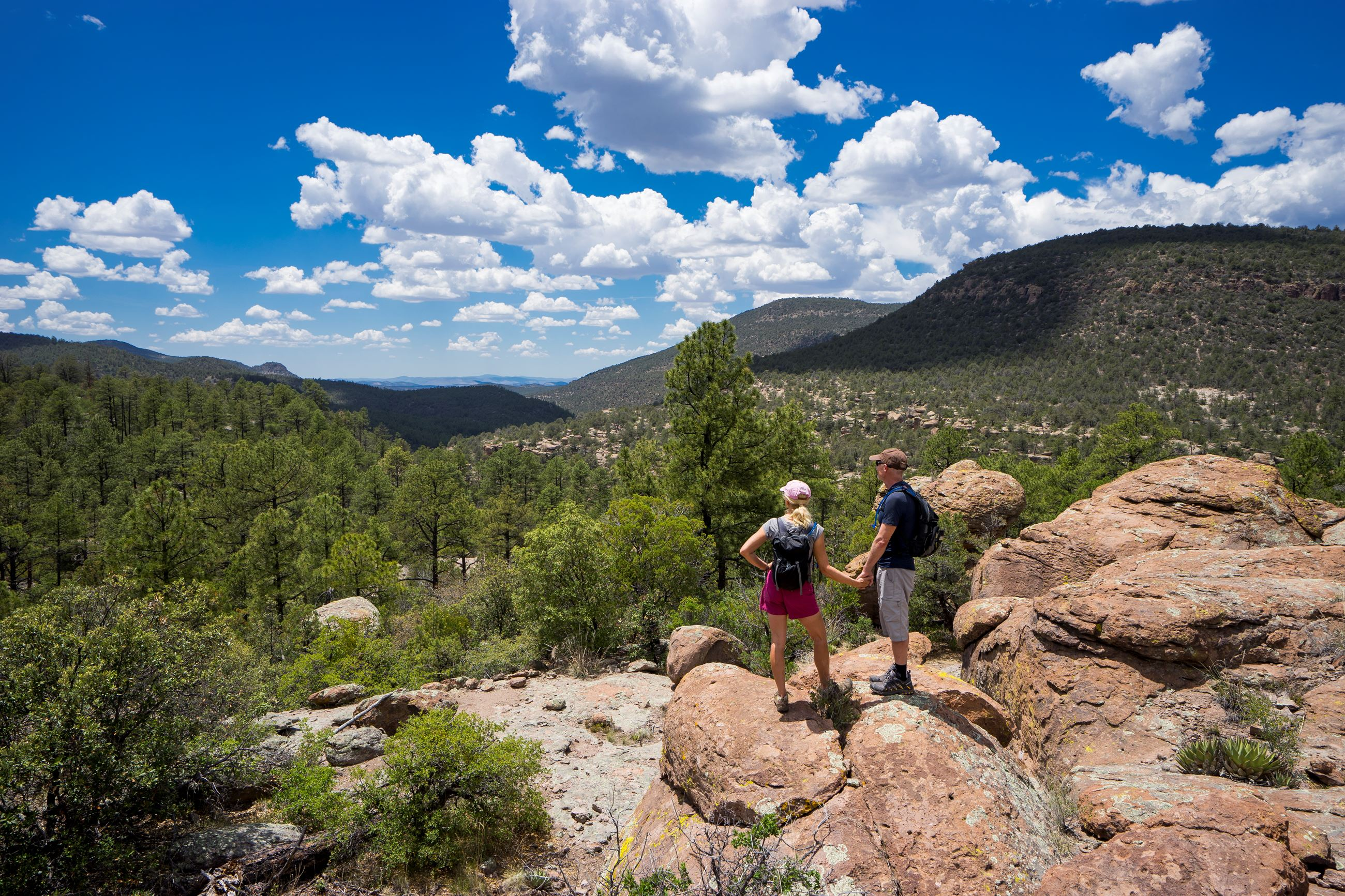 hikers overlooking Gila Wilderness